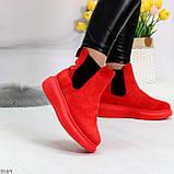 Ультра модные яркие красные женские ботинки челси по доступной цене, фото 2