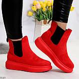 Ультра модные яркие красные женские ботинки челси по доступной цене, фото 4