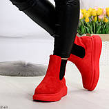 Ультра модные яркие красные женские ботинки челси по доступной цене, фото 6