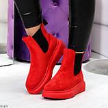 Ультра модные яркие красные женские ботинки челси по доступной цене, фото 9