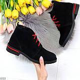 Модные черные женские ботинки из натуральной замши на яркой шнуровке, фото 10