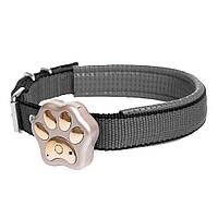 GPS маячок для кошек и собак GPS collar V30 (Золотой)