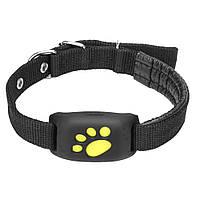GPS трекер для собак и кошек GPS collar Z8 (Черный)