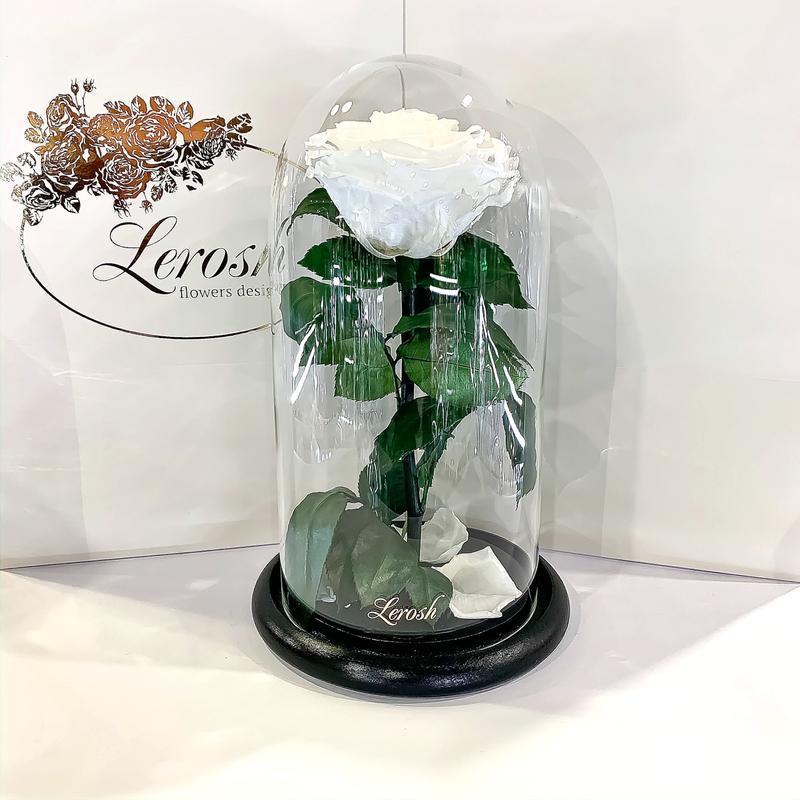 Белая роза в колбе Lerosh - Premium 27 см SKL15-279562