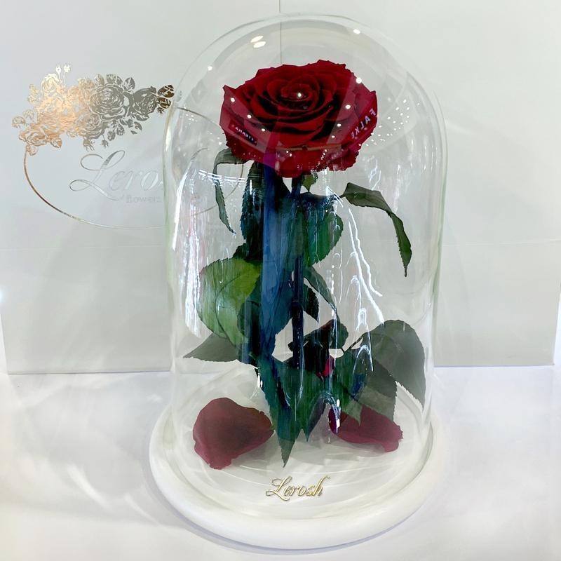 Бордово-малиновая роза в колбе Lerosh - Lux 33 см SKL15-279540