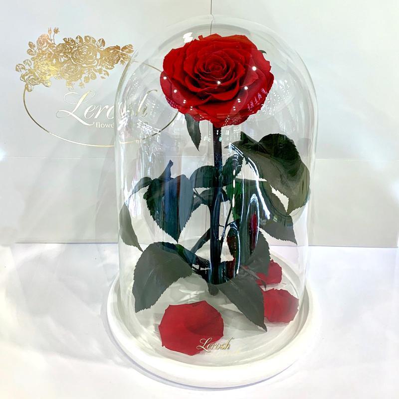 Красная роза в колбе Lerosh - Lux 33 см на белой подставке SKL15-279529