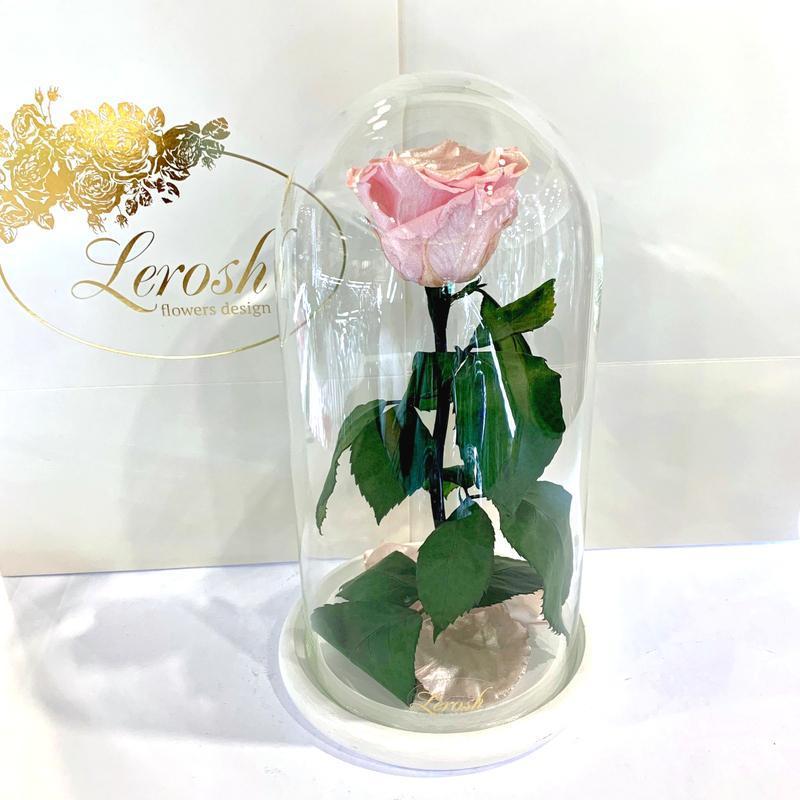 Розовая Жемчужная роза в колбе Lerosh - Classic 27 см SKL15-279561