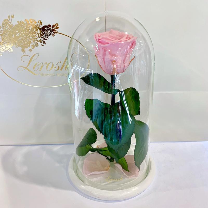 Розовая роза в колбе Lerosh - Classic 27 см SKL15-279572
