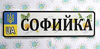 Номер на коляску с цветным фоном Софийка