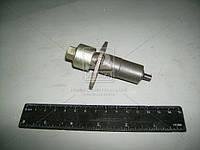 Натяжитель цепи ВАЗ 2101-2107 (АвтоВАЗ). 21010-100606000
