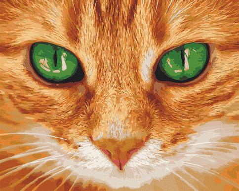 """Картина за номерами ArtCraft """"Зелені очі"""" 38х50см, 11620-AC"""