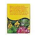 """Чай оджибве NOW Foods, Real Tea """"Ojibwa"""" без кофеїну, 24 пакетики (42 г), фото 4"""