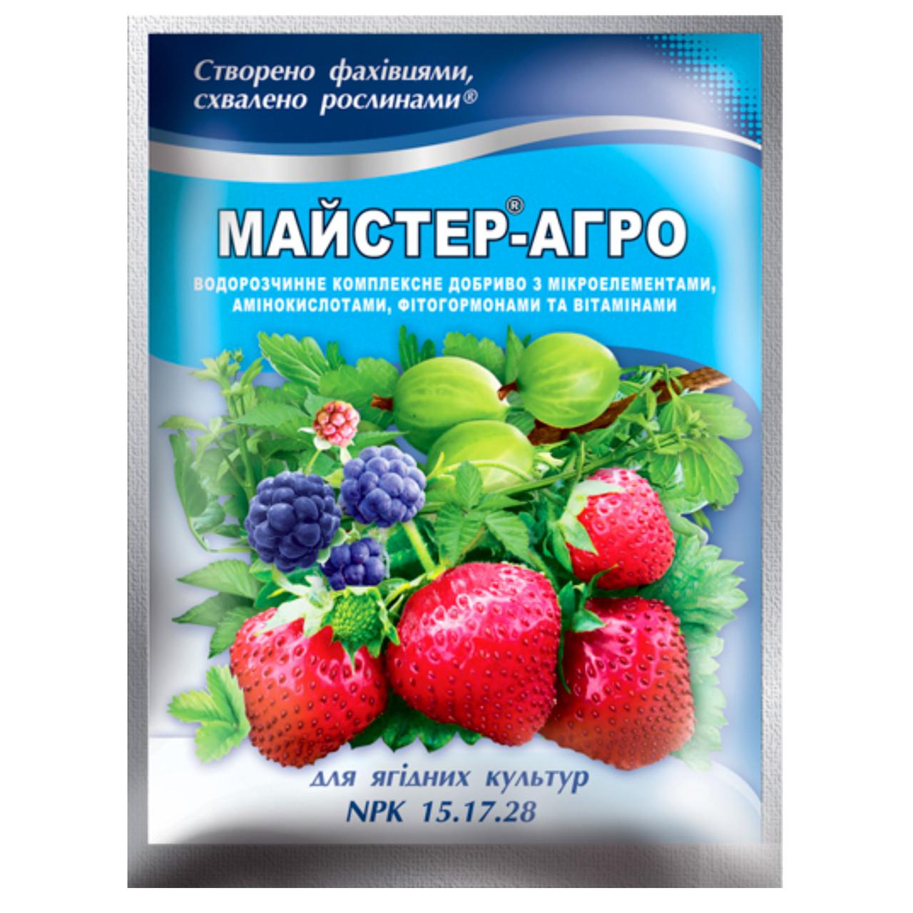 Удобрение Мастер-агро для ягодных культур 15.17.28 100 г