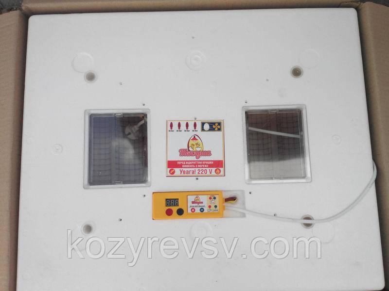 Автоматический инкубатор Теплуша ИБ-72 с вентилятором продам постоянно оптом и в розницу,Харьков