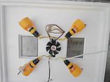 Автоматический инкубатор Теплуша ИБ-72 с вентилятором продам постоянно оптом и в розницу,Харьков, фото 3