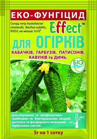 Біофунгіцид Еффект для огірків (5 гр), Біохім - Сервіс, фото 2