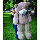 Плюшевые медведи: Плюшевый медвежонок Рафаэль 1,6 метра (160 см), Капучино, фото 3