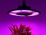 Фитолампа трехлепестковая 504 LED красно-синий спектр E27, фото 3