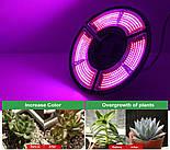 Фитолампа трехлепестковая 504 LED красно-синий спектр E27, фото 4