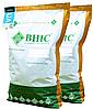 Семена кукурузы Гран 6 ВНІС ФАО 300, кукуруза Гран 6 простой гибрид, быстрая влагоотдача