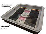 Автоматический инкубатор Рябушка Smart Plus turbo  на 120 куриных яиц  цифровым терморегулятором,Харьков, фото 4