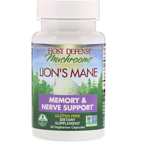 Ежовик гребенчатый, Поддержка памяти и нервов, Fungi Perfecti, Lion's Mane, 30 растительных капсул, фото 2