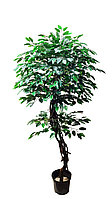 Дерево искусственное Фикус с лианами две кроны 170см