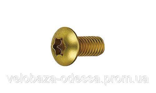 Набор болтов Bengal для роторов, М5хР0.8х10 12шт золотист.