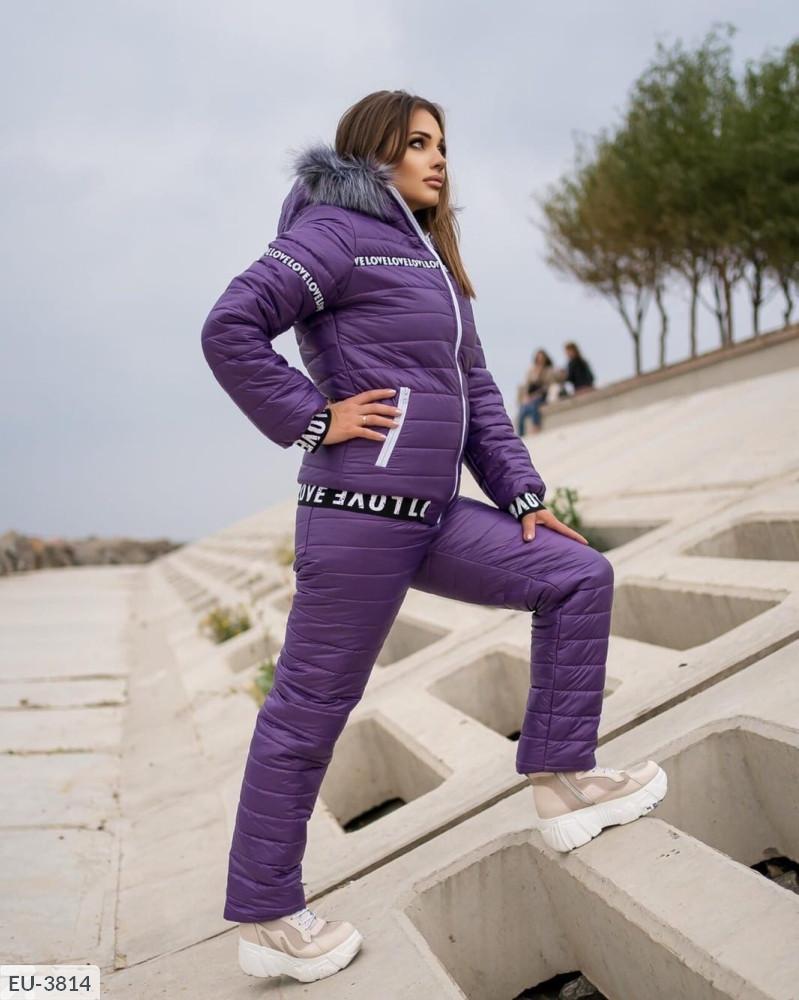 Женский лыжный костюм на меху SKL11-279612