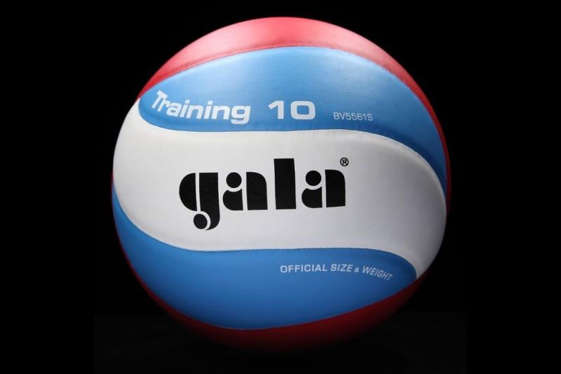 М'яч волейбольний Gala BV 5561 S Training