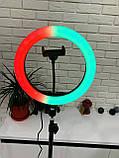 Кольцевая LED лампа 26см RGB с штативом, лампа блогера, фотографа, фото 3