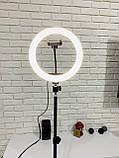 Кольцевая LED лампа 26см на штативе 2.1м, лампа блогера, фотографа, светодиодная лед лампа, фото 6