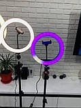Кольцевая  лампа 26см RGB со штативом 2,1м, лампа блогера, фотографа, светодиодная лед лампа, фото 2