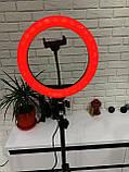 Кольцевая  лампа 26см RGB со штативом 2,1м, лампа блогера, фотографа, светодиодная лед лампа, фото 5