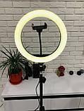 Кольцевая LED лампа 26см на штативе 2,1м, лампа блогера, фотографа, светодиодная лед лампа, фото 2
