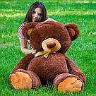 Плюшевые медведи: Плюшевый медвежонок Томми 1,5 метра (150 см), Шоколадный, фото 3