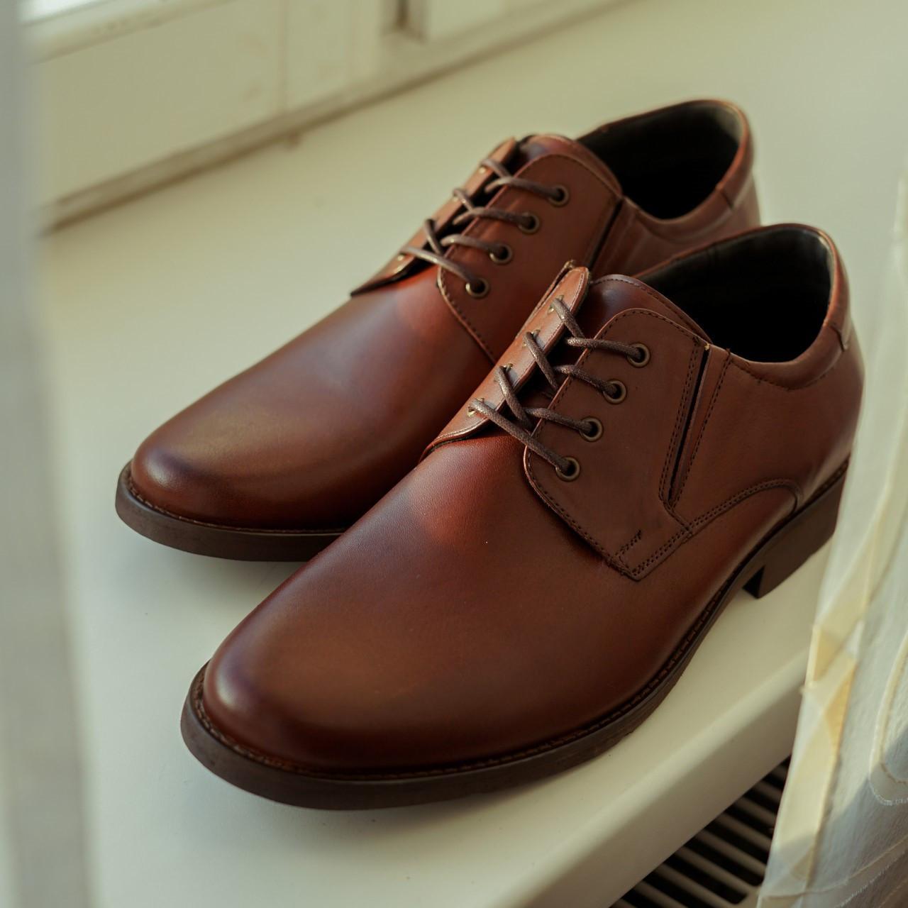 Коричневі шкіряні туфлі Pan 307