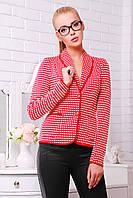 Коротенький женский пиджак красный в белые точки