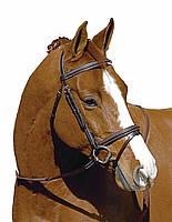Уздечка Event для лошади