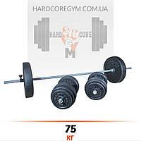 Штанга (1,8 м) + гантели (43 см) | 75 кг
