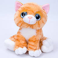 Кіт 003