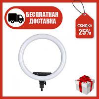 Кольцевая светодиодная LED лампа 36 см со штативом для Tik Tok, селфи, видео AL-360 с сенсорными кнопками