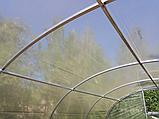 Теплиця «Веган» 4×10 з квадратної оцинкованої труби з плівкою 150 мкм, фото 6