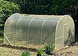 Теплиця «Веган» 4×10 з квадратної оцинкованої труби з плівкою 150 мкм, фото 5