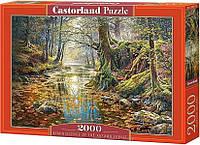 Пазли Осінній ліс, 2000 елементів Castorland З-200757