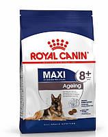 Royal Canin Maxi Ageing 8+ (Роял Канин Макси Ейджинг 8+) сухой корм для собак крупных пород от 8 лет