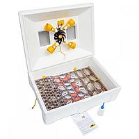Інкубатор механічний Теплуша ІБ 100 ЛВ Ламповий з вологоміром