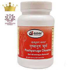 Пушьянуга чурна (Pushyanuga Choorna, SDM), 100 грам - Аюрведа преміум класу (жіноча репродуктивна система)