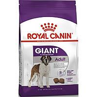 Royal Canin Giant Adult (Роял Канин Джаинт Эдалт) сухой корм для взрослых собак гигантских пород
