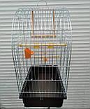 Клетка для попугая цинк Патриот 56х31х69, фото 2